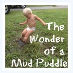 The Wonder of a Mud Puddle
