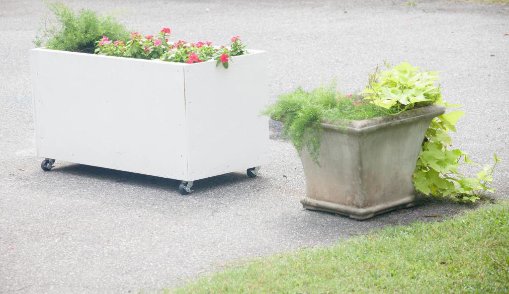 DIY Planter (1 of 8)