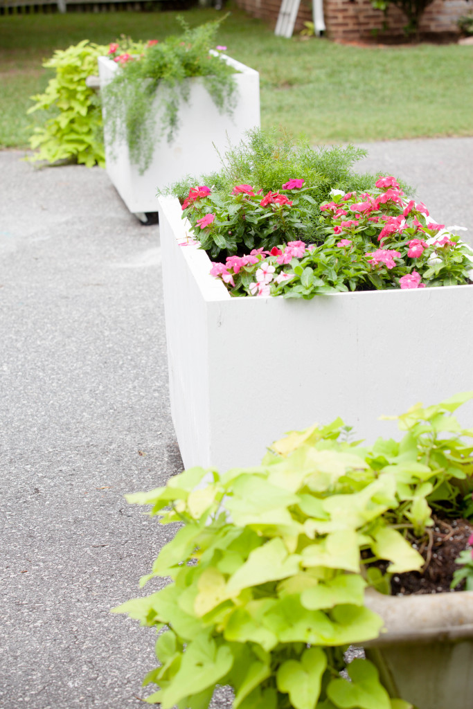 DIY Planter (5 of 8)